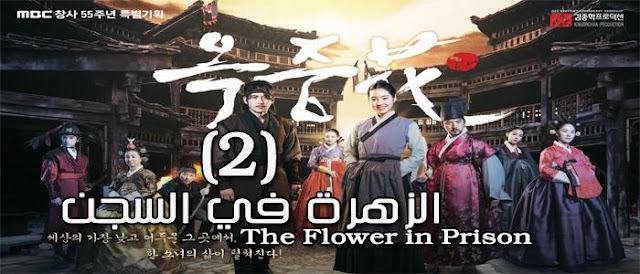 مسلسل The Flower in Prison كوري الحلقة 2 الزهرة في السجن Episode 2 مترجمة