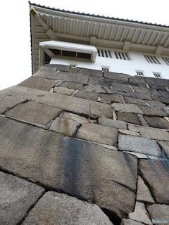 大阪城の石垣に生える木