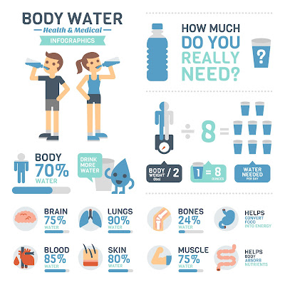 An infographic of how much water your body needs every day as well as what percentage of various human body parts are made up of water.