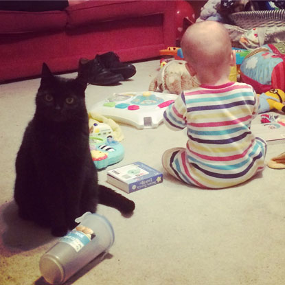 Nicola Pennicott-Hall's cat Vera and baby