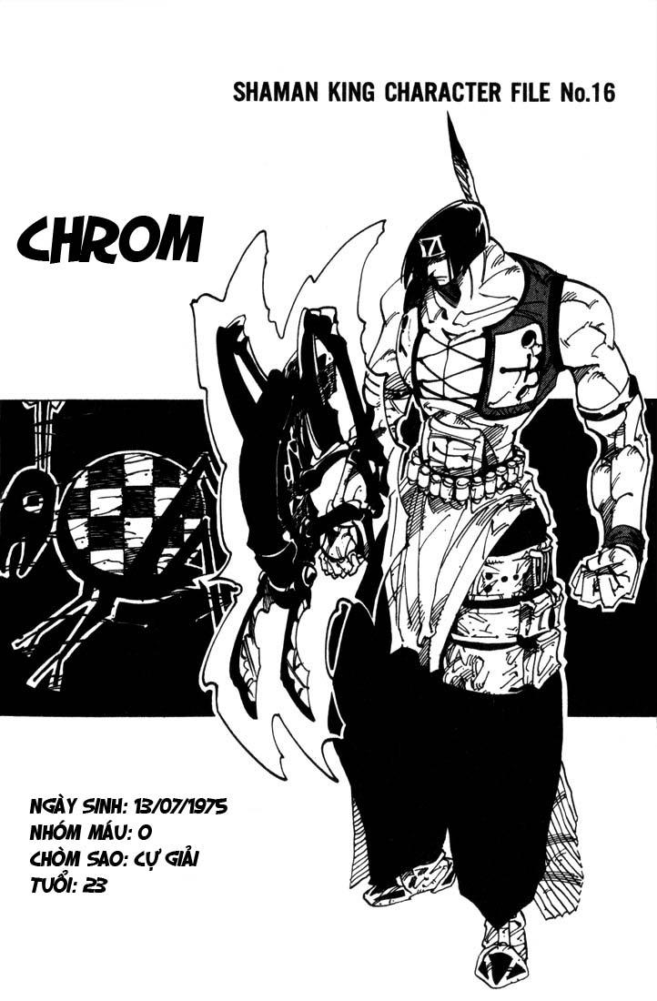 Shaman King [Vua pháp thuật] chap 31 trang 19