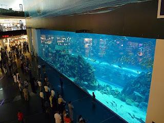 Aquário dentro do Dubai Mall