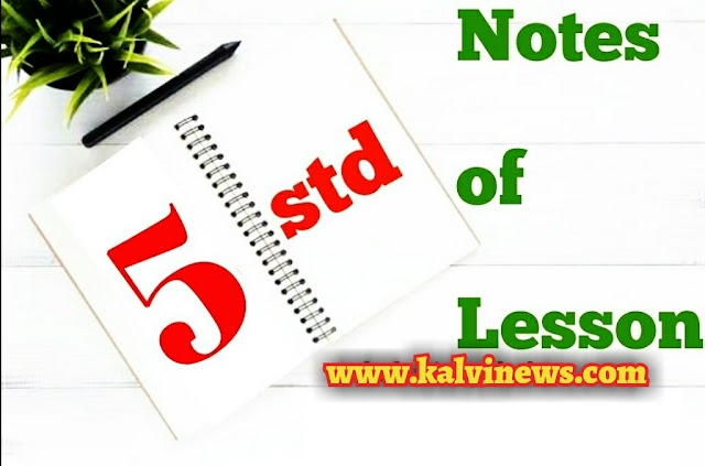 5 th std Lesson Plan - November last week - All Subjects