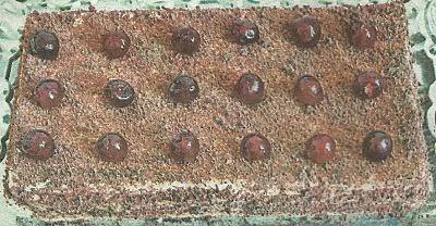 Рецепт вафельного торта, все необходимые ингредиенты и способ приготовления