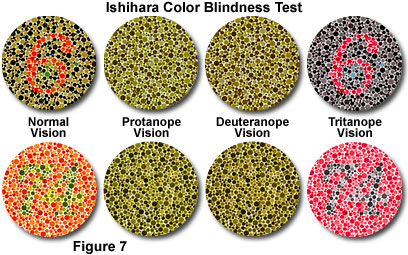 Image result for red green colorblind test
