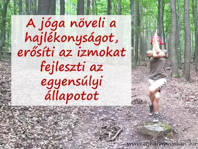 jóga tanfolyam, kezdő jóga, jóg erősít, jóga egyensúly