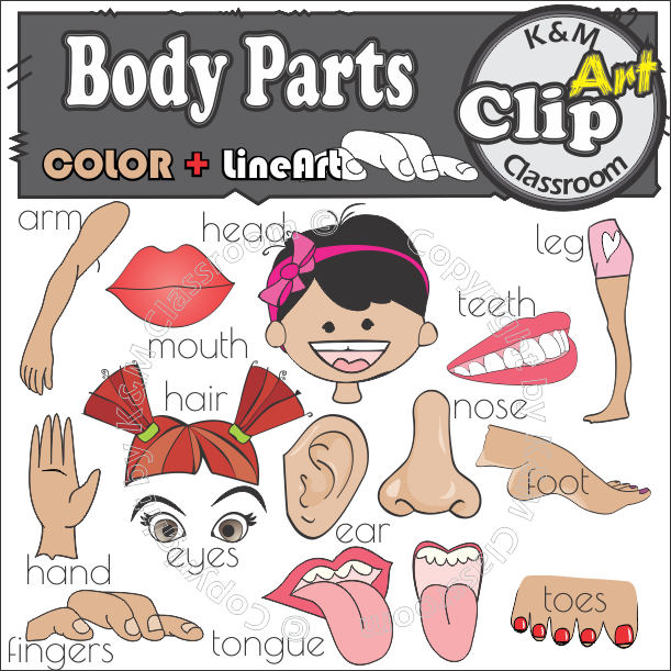 Body Parts Clip Art