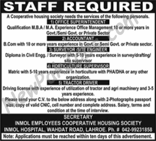 Inmol Employees Cooperative Society looking for Staff