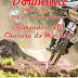 10ª Etapa Downhill