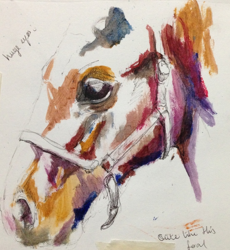 watercolour painting of foal, equine art, 100 paintings
