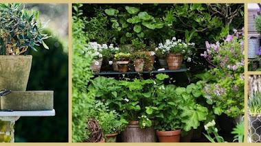 Una de Instagram. Inspiración y jardín con Mette Krull
