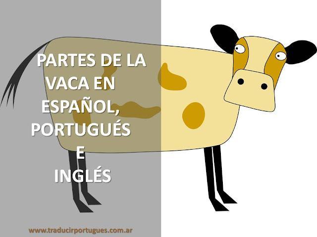 Partes de la vaca, cortes de la vaca, español, portugués, inglés, traducción