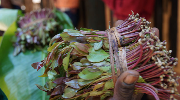Britain has maintained the ban on miraa will stay despite the massive lobbying that has been carried out by Kenya to try and convince them to lift the ban. British High Commissioner Nic Hailey said he regrets there was nothing that could be done to revert the current situation.