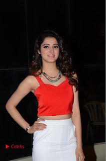 Actress Richa Panai Pictures at Eedu Gold Ehe Gummadikaya Function  0044