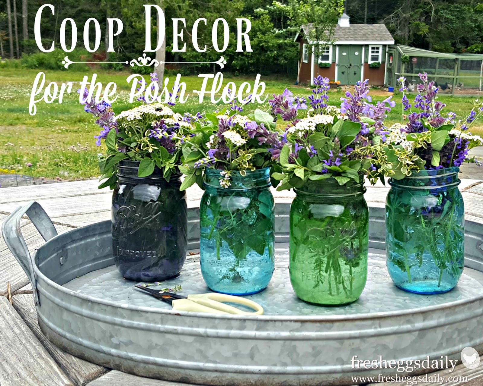 Chicken Coop Decor for the Posh Flock