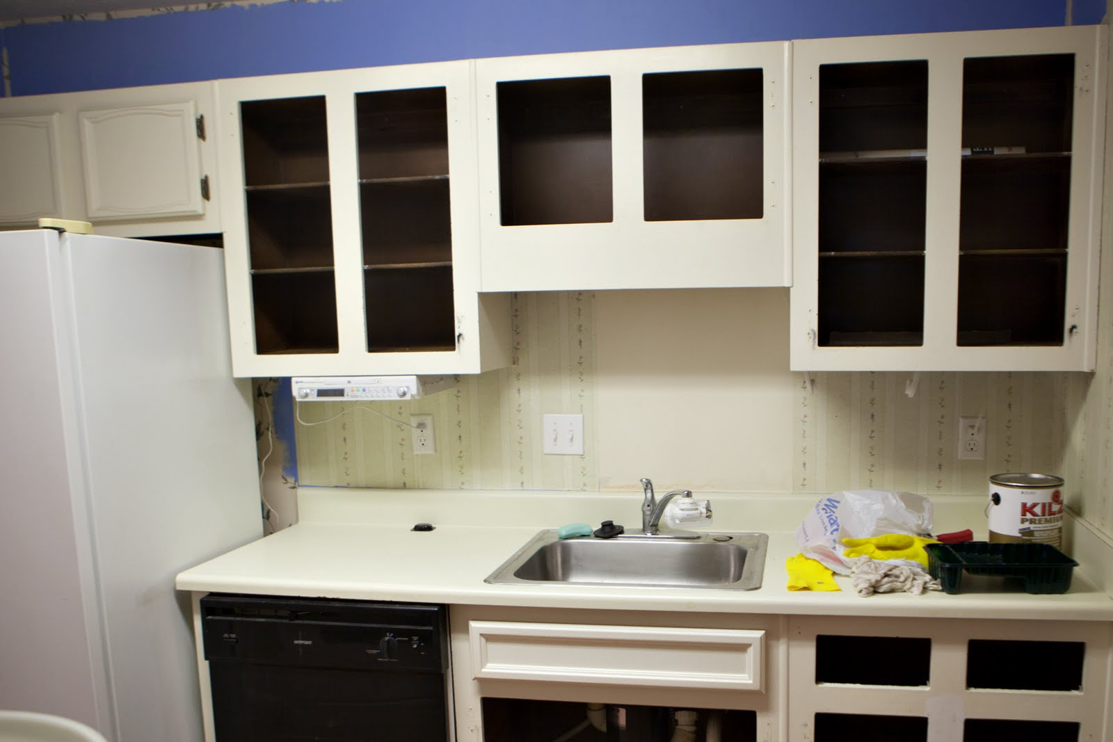 I'll do it my damn self: Painting cabinets - inside and out