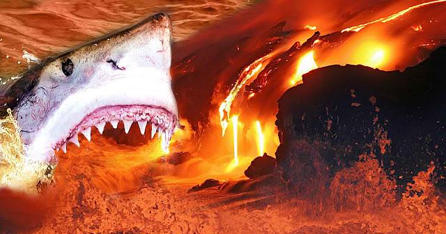 Strange Marine Ecosystem Spotted Inside An Active Volcano