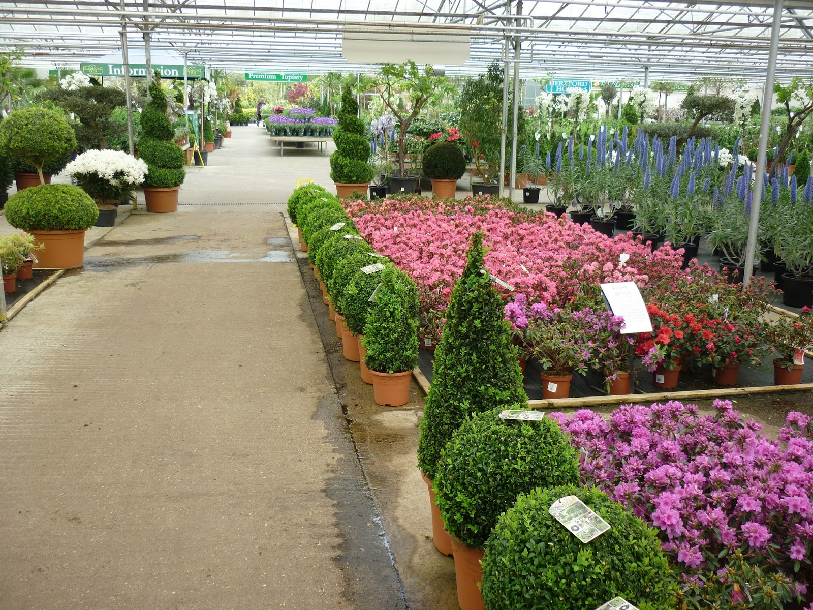 Imagine A Westfield Shopping Complex, Only Just For Plants. And Dirt Cheap,  Too! A Gardeneru0027s Wet Dream.