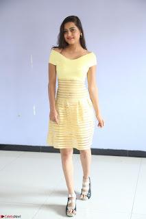 Shipra gaur in V Neck short Yellow Dress ~  071.JPG