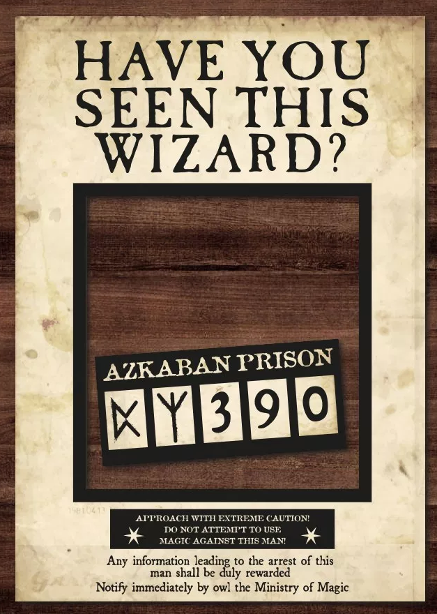 Have You Seen This Wizard Photomaton Harry Potter