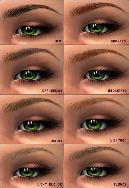 Eyebrow Shapes Images