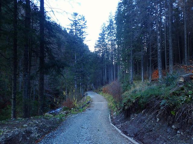 Ścieżka przez Dolinę Olczyską