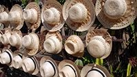 WICKER HATS