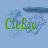 Exercícios de Biologia sobre os vegetais, botânica.