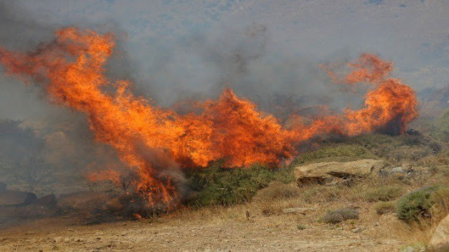 Πυρκαγιά στην περιοχή Πέντε Αλώνια της Μεσσηνίας