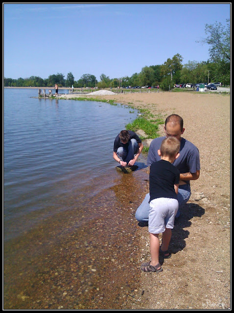 collecting rocks on the shore