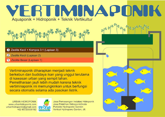 urban farming, urban hidroponik,