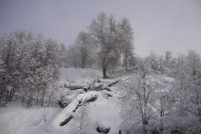 Piedras Blancas - Bariloche - Argentina