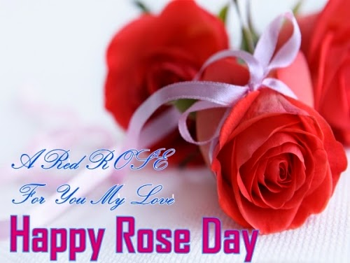 Happy Rose Day SMS Wishes Message: Best Rose Day 2016 SMS