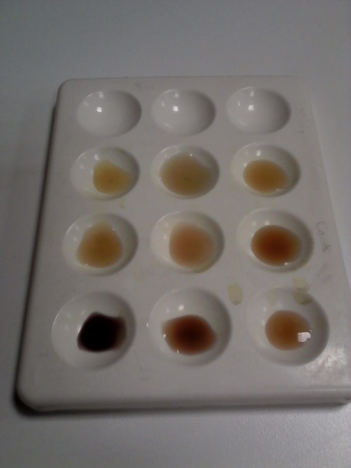 amylase starch experiment results