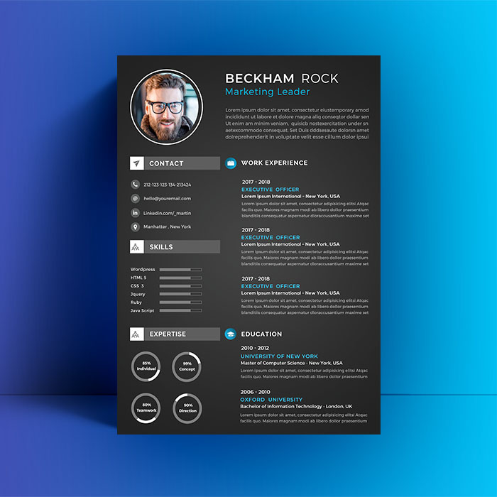 Freebie Professional  Resume CV