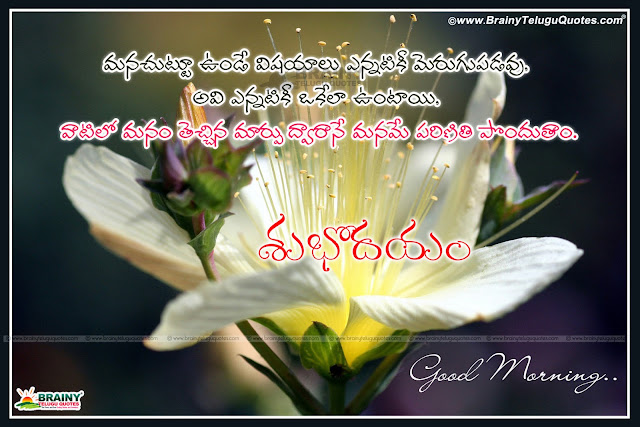 Here is Latest Telugu good morning quotes messages greetings, Latest telugu good morning messages for friends, Beautiful inspirationa telugu quotations for good morning, Good morning telugu text messages for whatsapp,Latest Telugu good morning quotes messages greetings