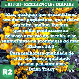 016-R2- RESILIÊNCIA 2