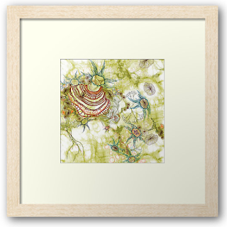 Framed Fine art Print Isolation by Mimi Pinto