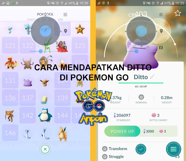 Cara Mendapatkan Ditto di Pokemon GO Mudah, Cara Mendapatkan Ditto di Pokemon Go Work, Cara Mudah Mendapatkan Ditto Pokemon GO.