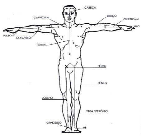 #Antropometria, O Que é Antropometria?