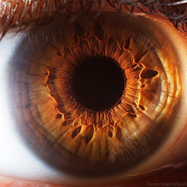 eye-macro-photo-10