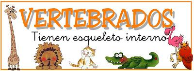 Resultado de imagen de ANIMALES VERTEBRADOS E INVERTEBRADOS