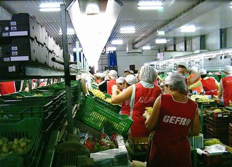 """Ενημερωτική σύσκεψη στο Άργος για τους Εργαζόμενους στο εργοστάσιο """"Γ. ΦΡΑΓΚΙΣΤΑΣ ΑΕ"""