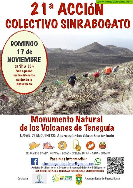 Acción de Sinrabogato La Palma