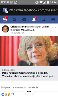 Corina Chiriac - fake news