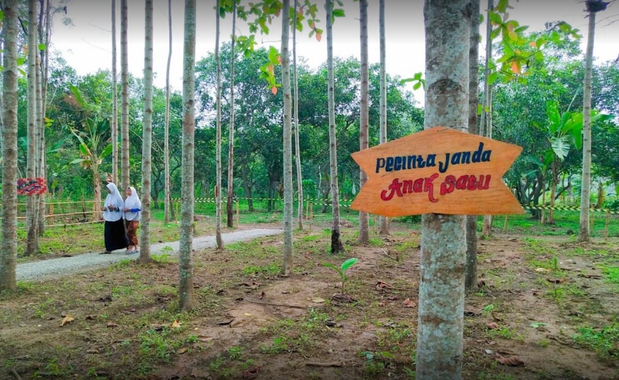 Tempat Wisata Alam Di Cikarang Tempat Wisata Indonesia