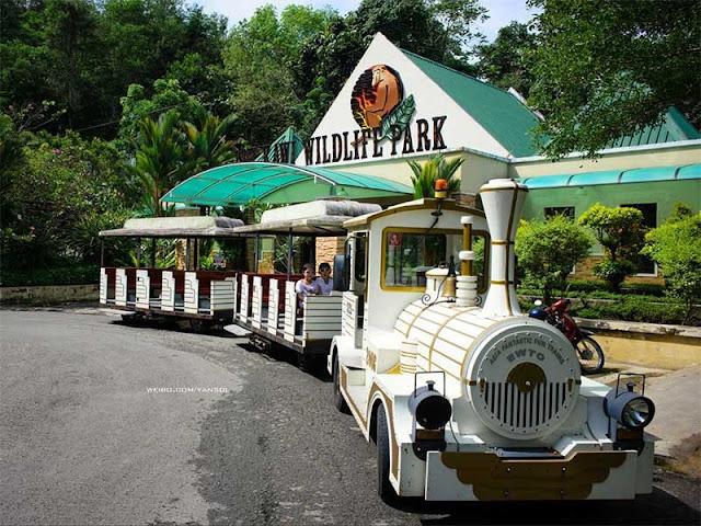 Lok Kawi Wildlife Park, Kota Kinabalu