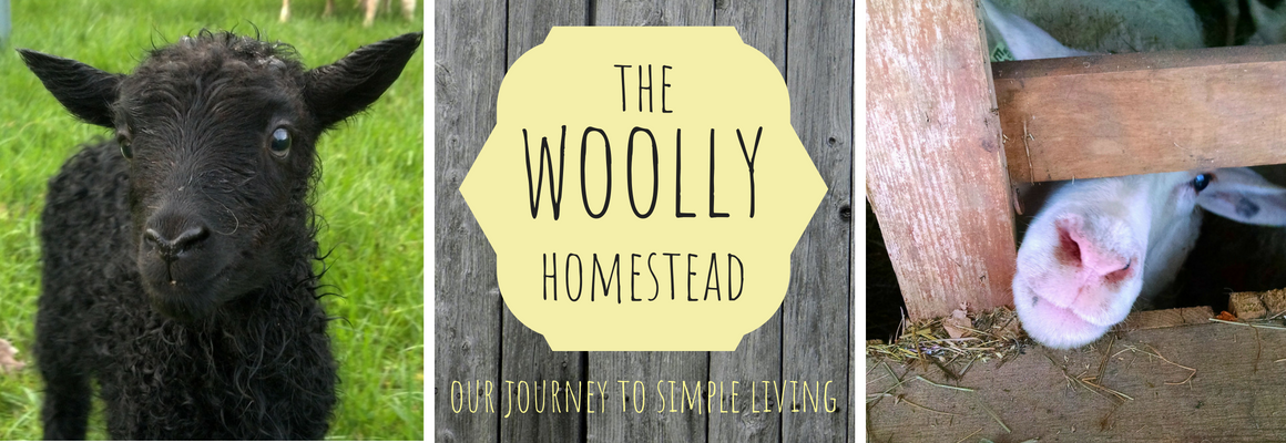 The Woolly Homestead