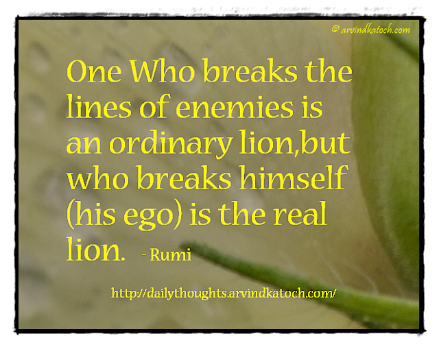 Thought for the Day, Rumi, Meaning, Quote, enemies, lion, qotd, Daily thought,