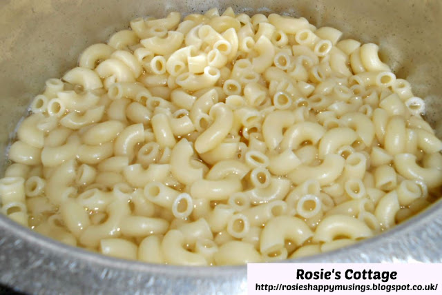Cooked Macaroni Or Elbow Pasta